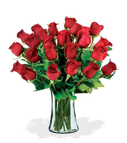 24 Artisan Roses - Red