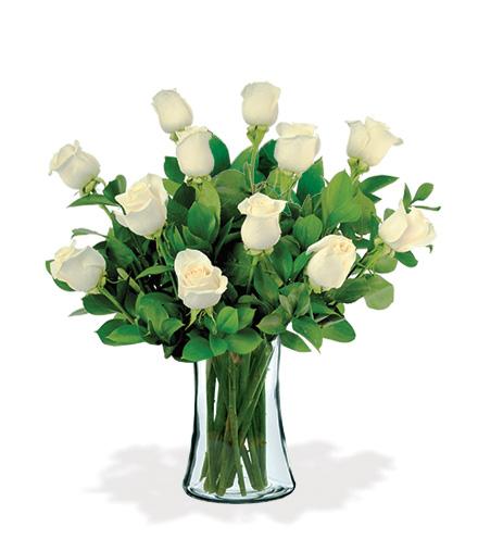 12 Artisan Roses - White
