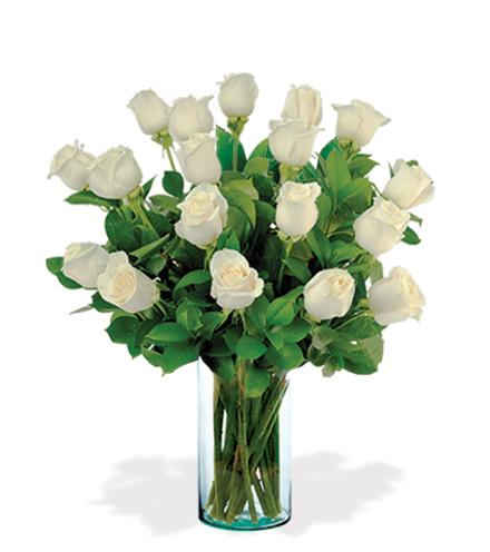 18 Artisan Roses - White