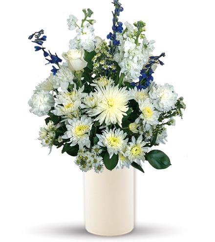 Treasured Love Blue & White