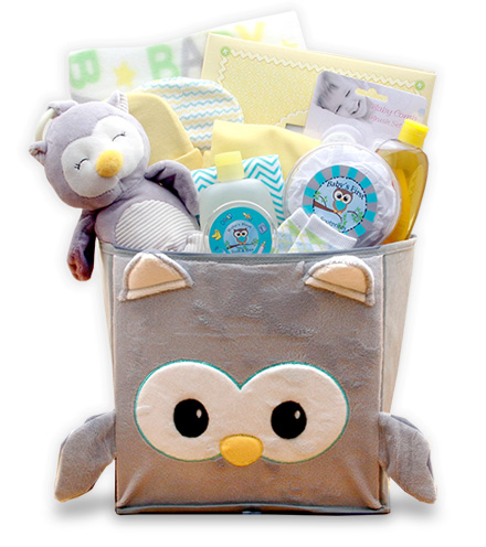 Plush Owl Little Hoot New Baby Gift Set
