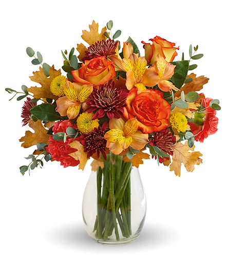 Autumn Colors From  $75
