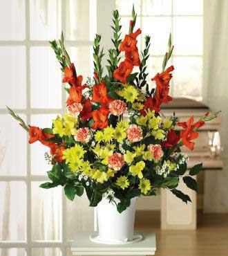 Gladiolus, Carnations & Alstroemeria