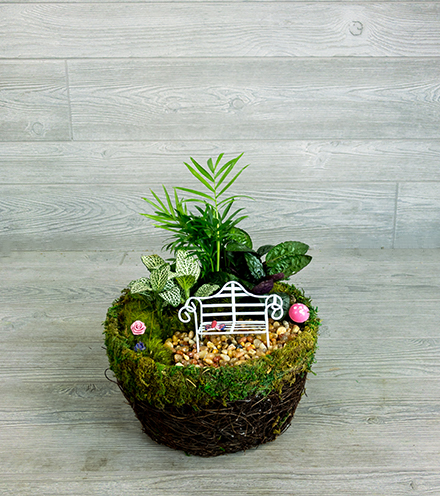 Enchanted Moss Garden - Pixie Size