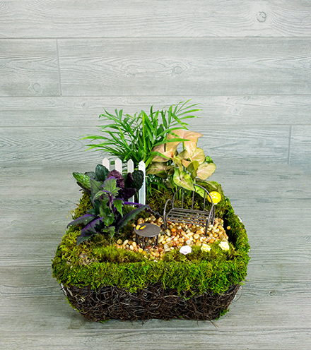 Enchanted Moss Garden - Gnome Size