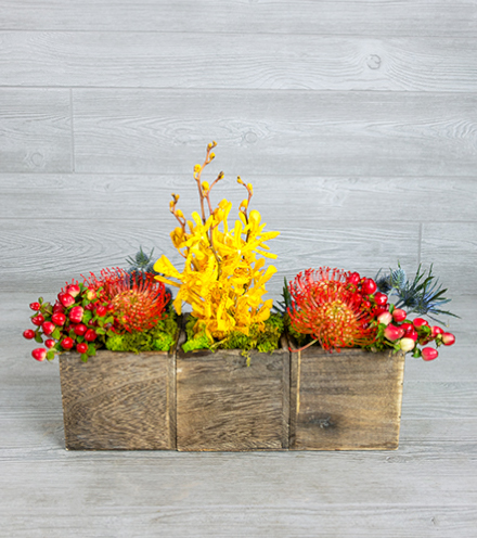 Thankfully Not Squared - Centerpiece