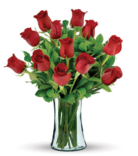 12 Red Long Stem Roses