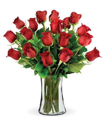 18 Red Long-Stem Roses