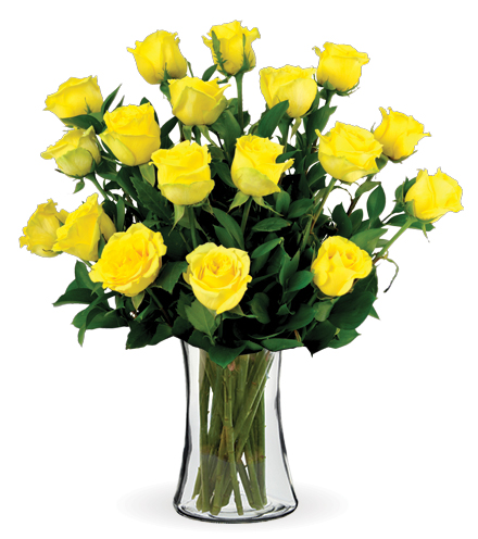 18 Yellow Long-Stem Roses
