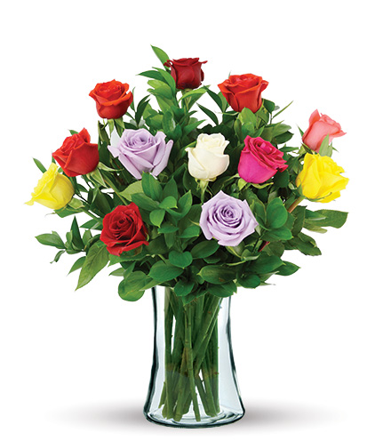 12 Multi-Color Long Stem Roses
