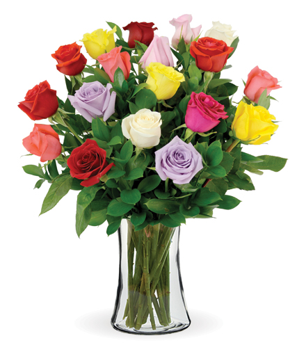 18 Multi-Color Long-Stem Roses
