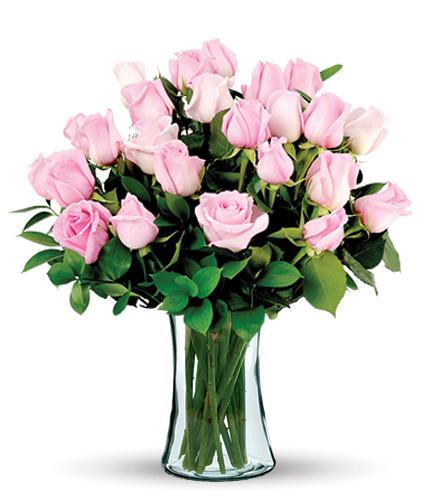 24 Pink Long-Stem Roses