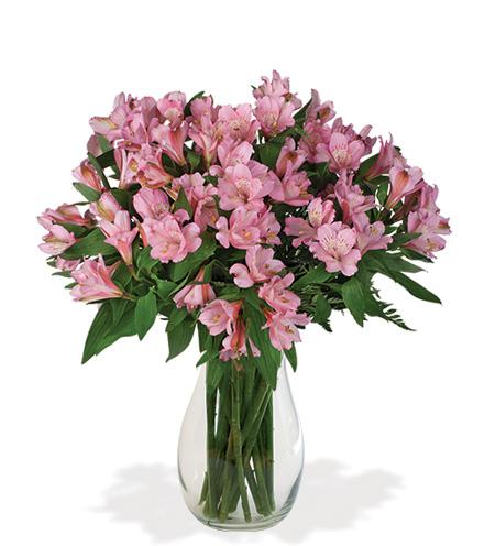 Pink Alstroemeria Bouquet