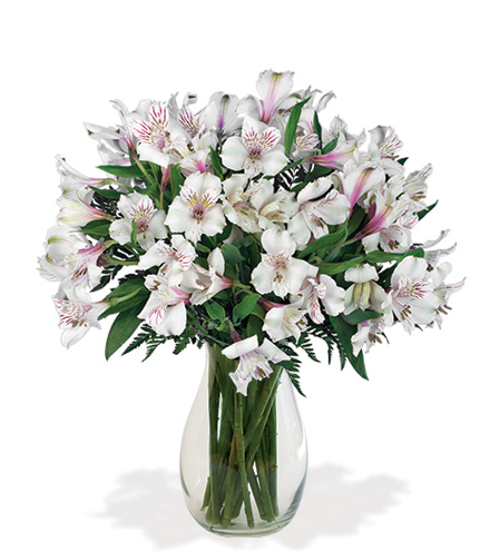 White Alstroemeria Bouquet
