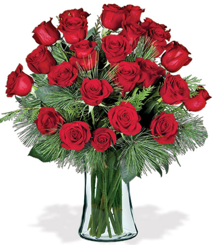 24 Red Holiday Roses