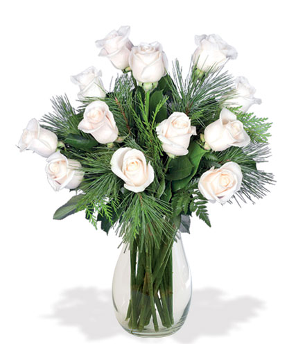 12 White Holiday Roses