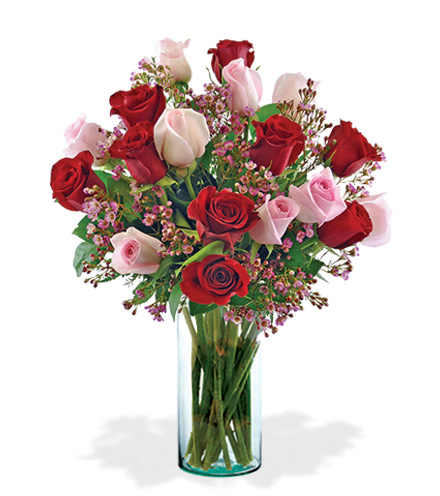 18 Ultimate Elegance Roses Bouquet