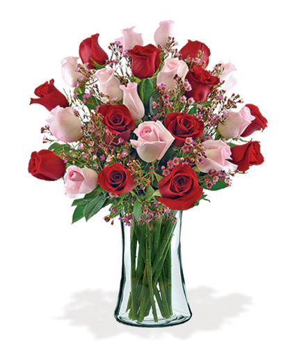 12 Ultimate Elegance Roses Bouquet