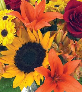 Florist Choice - Autumn - Arrangement Flower Delivery