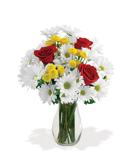 Dash of Daisy Bouquet Flower Delivery