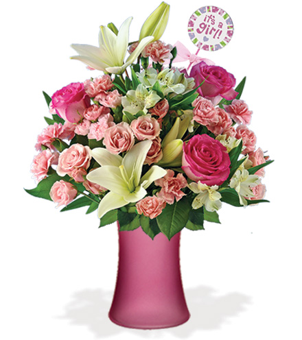 Its a baby girl with pink vase baby pick great blooms today its a baby girl with pink vase baby pick mightylinksfo