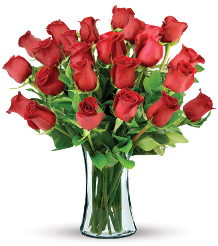 24 Red Long-Stem Roses Bouquet Flower Delivery