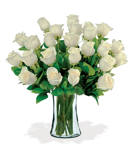 24 White Long-Stem Roses Bouquet Flower Delivery