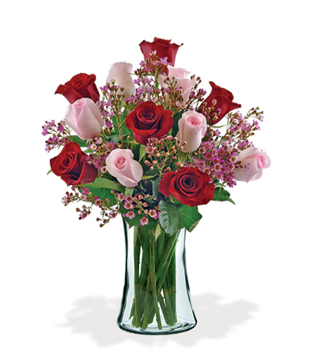 12 Ultimate Elegance Roses Bouquet Flower Delivery