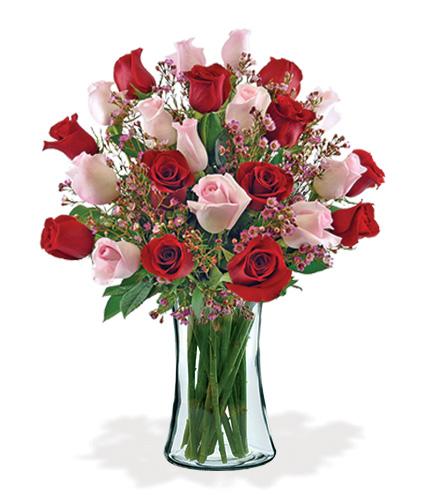 24 Ultimate Elegance Roses Bouquet Flower Delivery